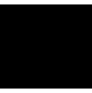 Vektorisiertes CSS3 Logo